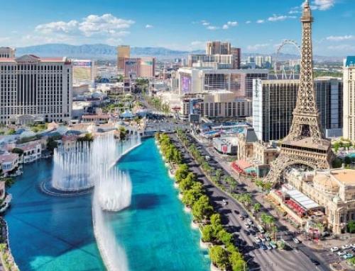 Las Vegas Conference Survival Guide
