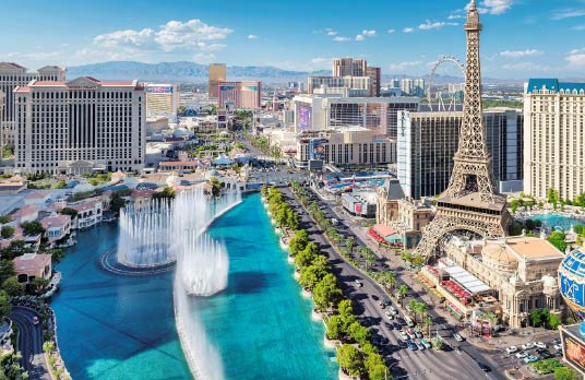 Las Vegas Conference Survival Guide